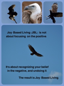 Vulture Meme - Joy Based Living Is - sml