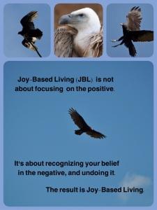 Vulture Meme - Joy Based Living Is - sml